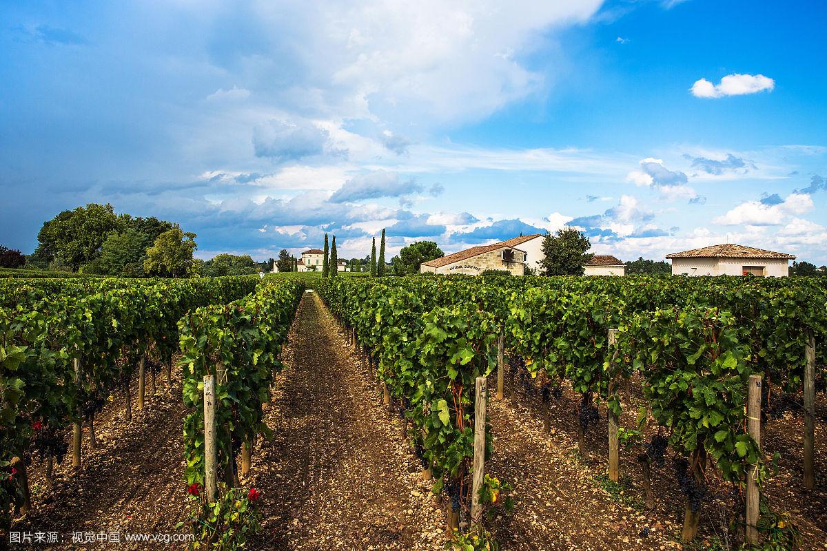 酒庄杜霍庄园的历史要追溯到十二世纪,最初由杜霍?杜哈斯Dur