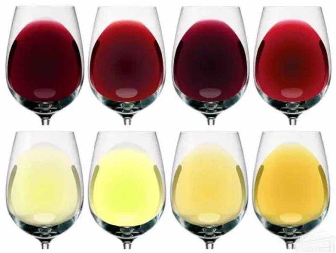 葡萄酒入门 什么是葡萄酒?红酒和葡萄酒是什么关系?